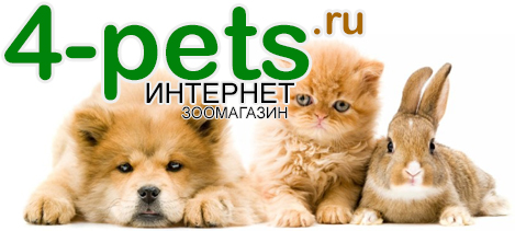 4-pets.ru